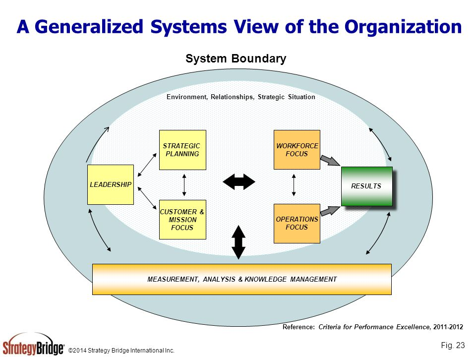 A Generalized Systems View of the Organization