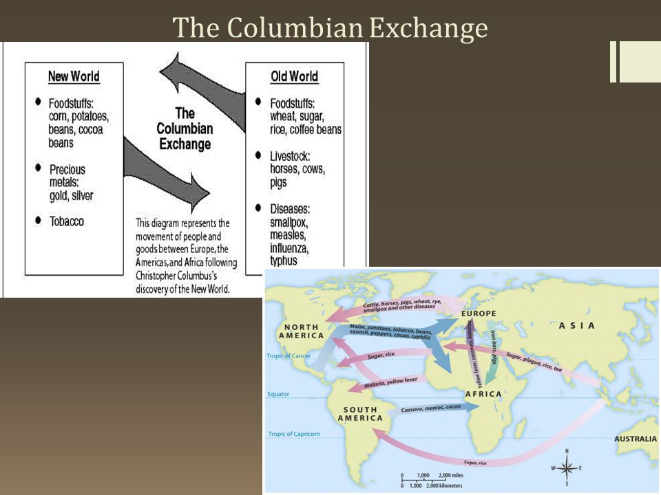 a description of columbian exchange