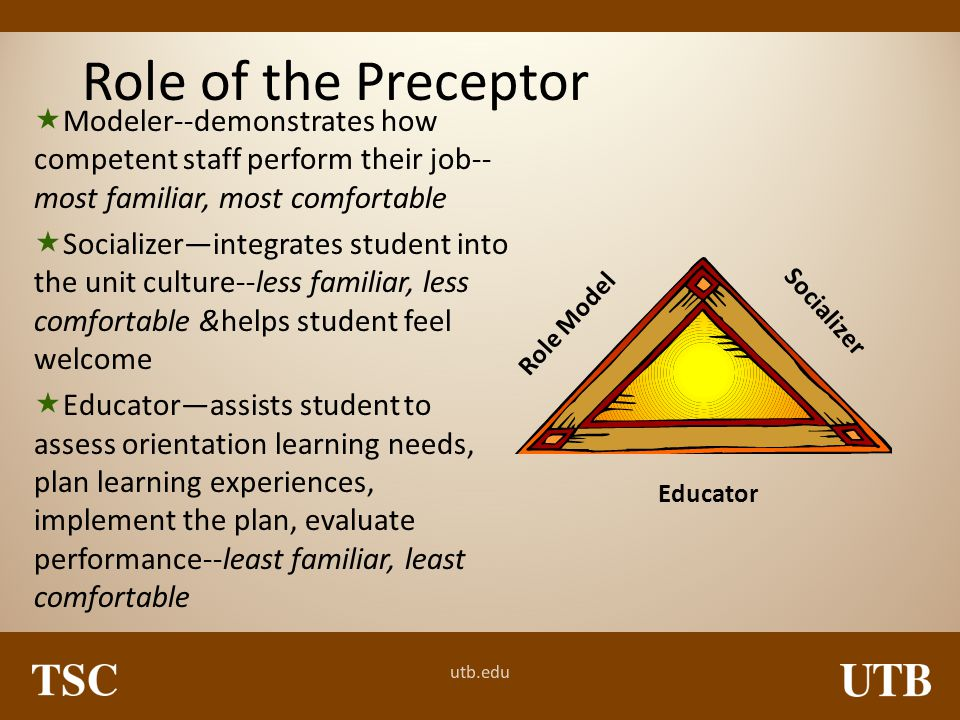 Role of the Preceptor Modeler--demonstrates how competent staff perform their job--most familiar, most comfortable.
