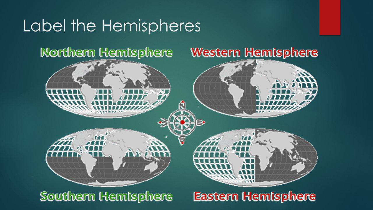 Label the Hemispheres
