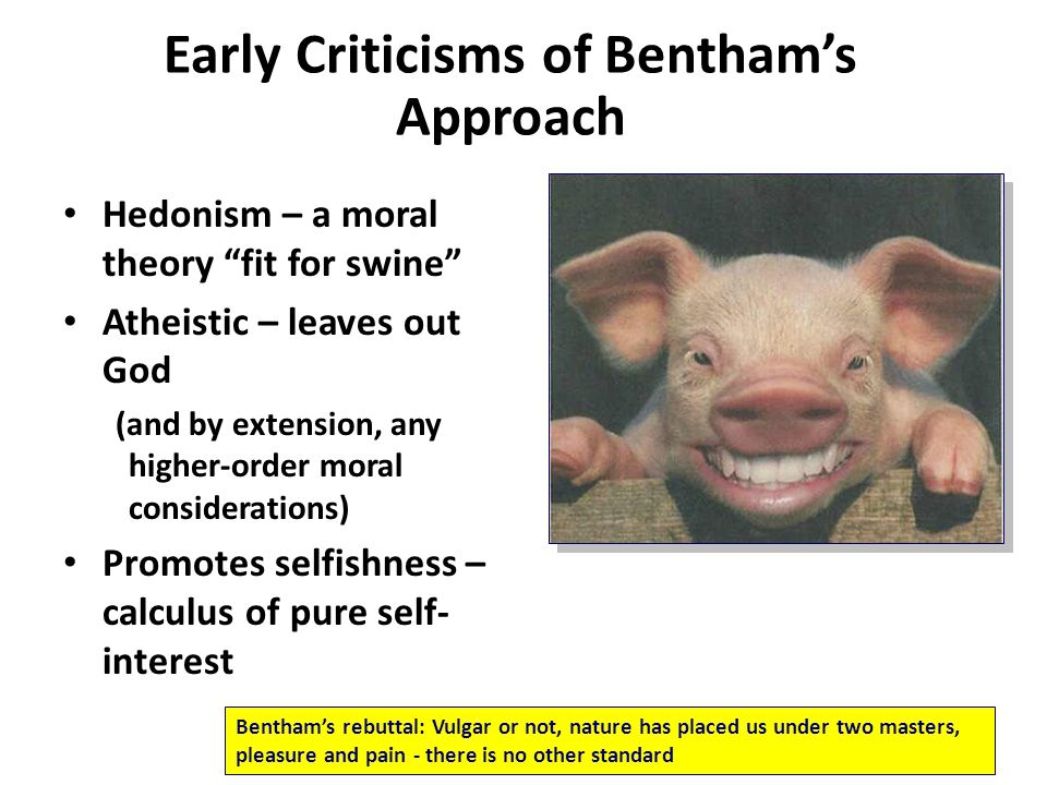 Early Criticisms of Bentham's Approach
