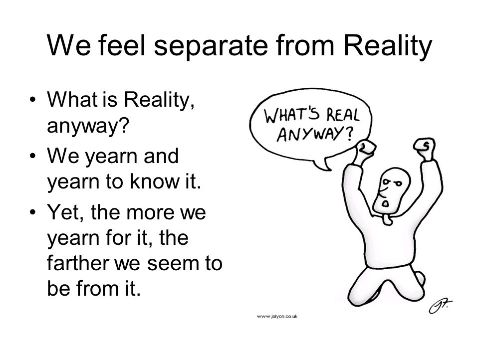 We feel separate from Reality