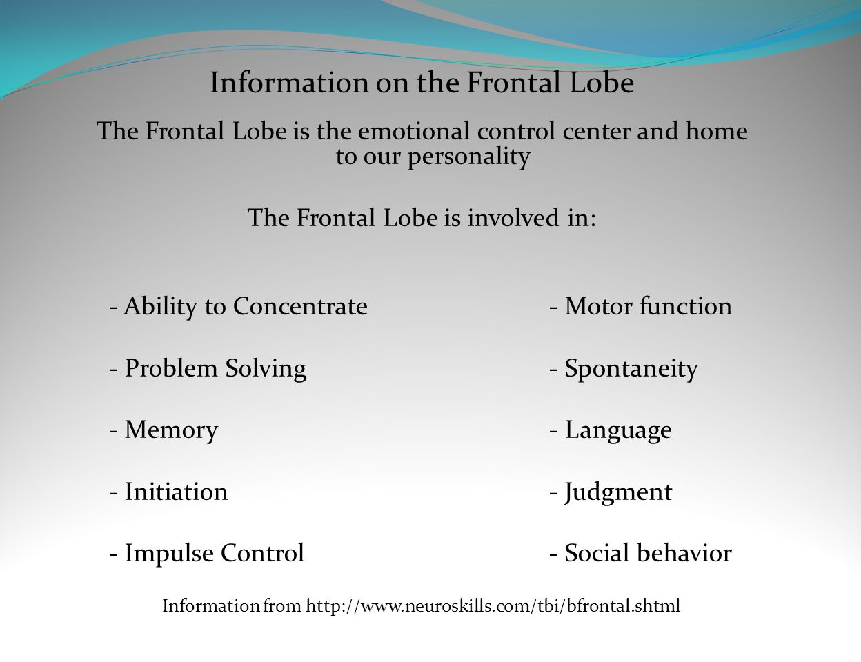 Information on the Frontal Lobe
