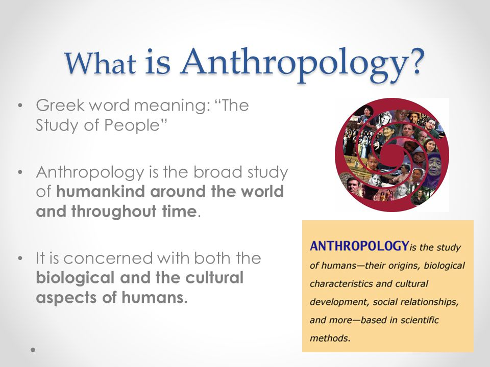 What is Anthropology Greek word meaning: The Study of People