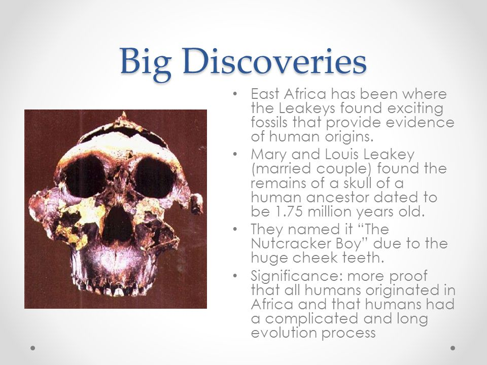 Big Discoveries East Africa has been where the Leakeys found exciting fossils that provide evidence of human origins.