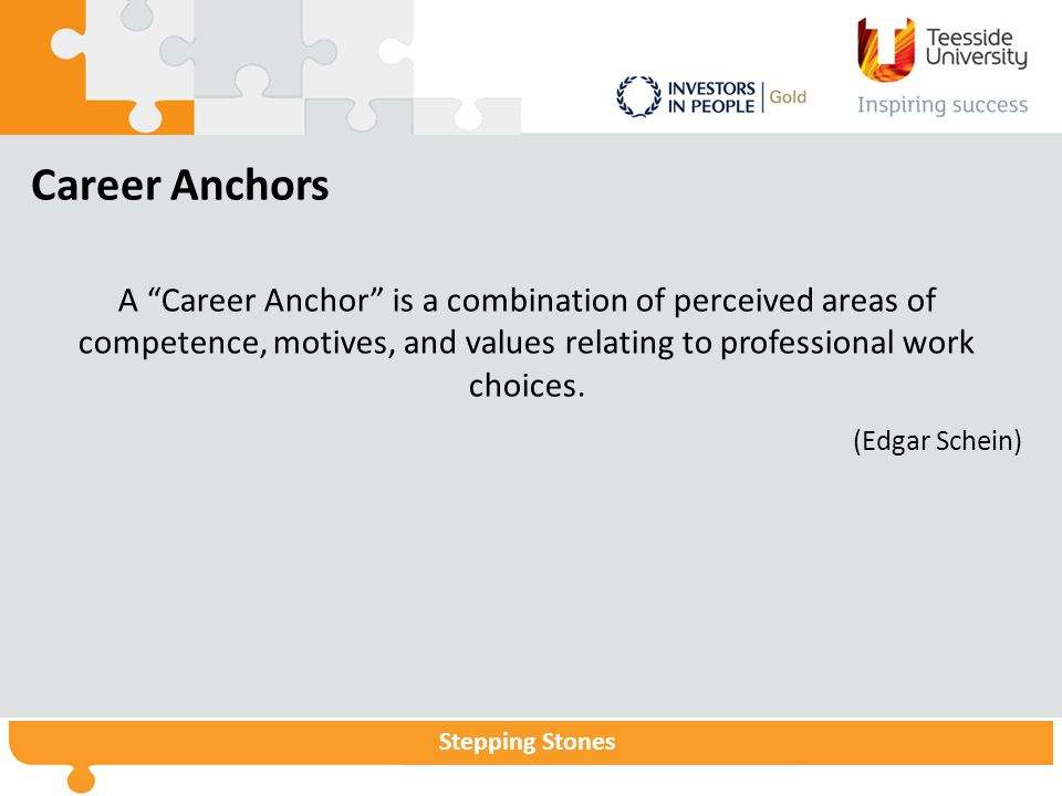 Career Anchors A Career Anchor is a combination of perceived areas of competence, motives, and values relating to professional work choices.