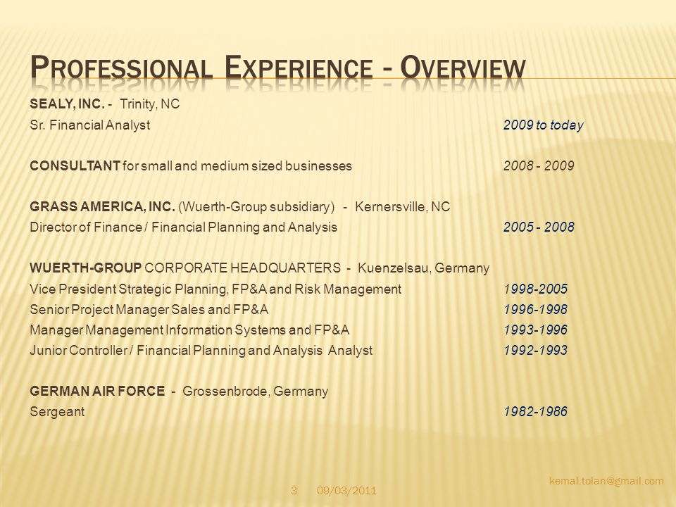 Professional Experience - Overview