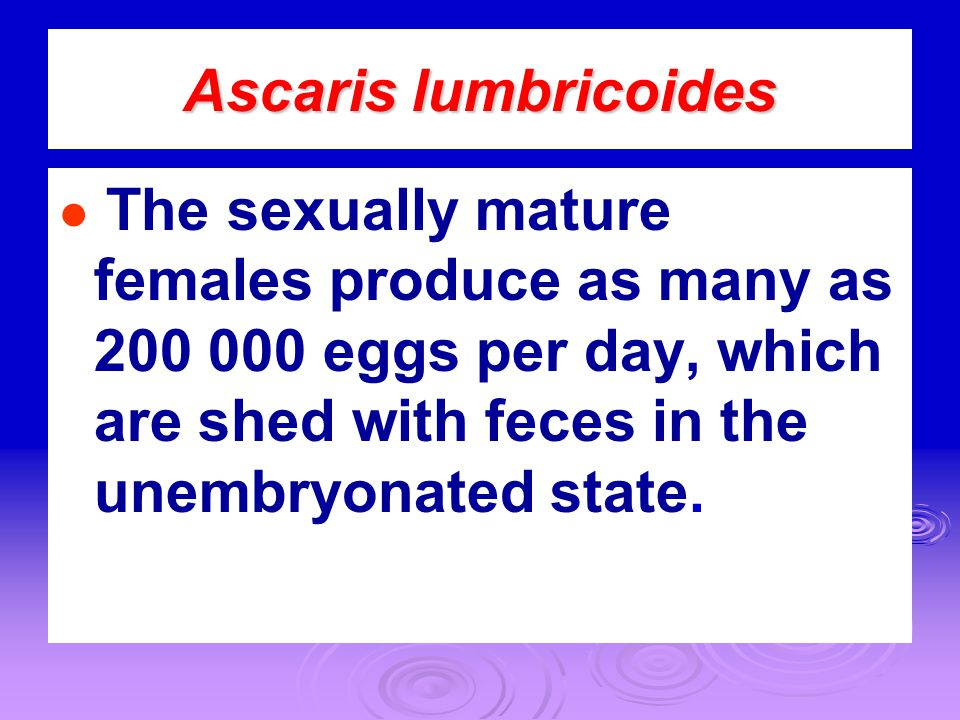Ascaris lumbricoides ● The sexually mature females produce as many as 200 000 eggs per day, which are shed with feces in the unembryonated state.