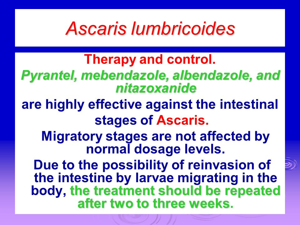 Ascaris lumbricoides Therapy and control.