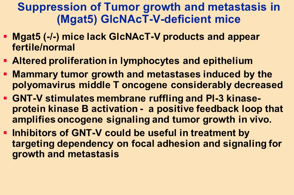 Suppression of Tumor growth and metastasis in (Mgat5) GlcNAcT-V-deficient mice