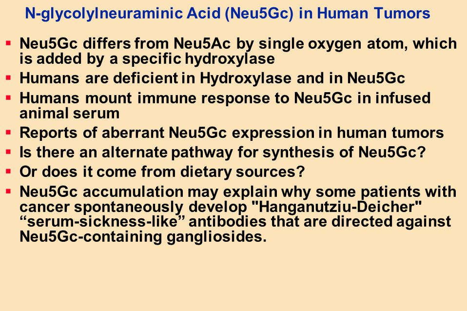 N-glycolylneuraminic Acid (Neu5Gc) in Human Tumors
