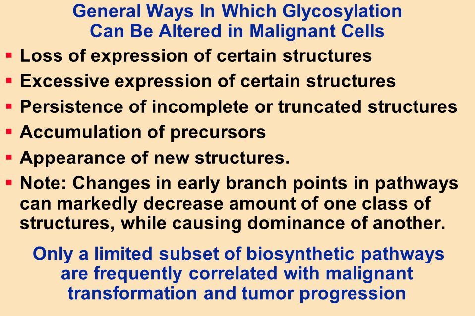 General Ways In Which Glycosylation Can Be Altered in Malignant Cells