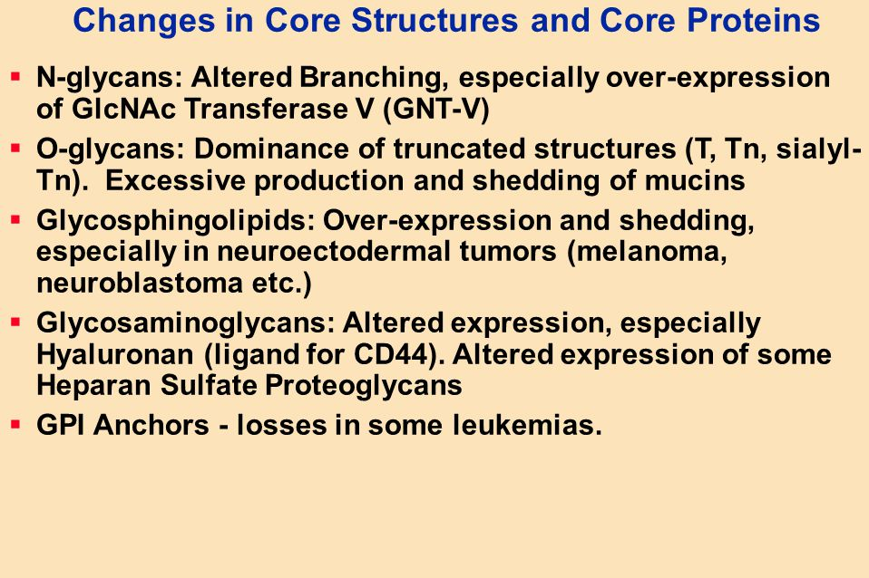 Changes in Core Structures and Core Proteins