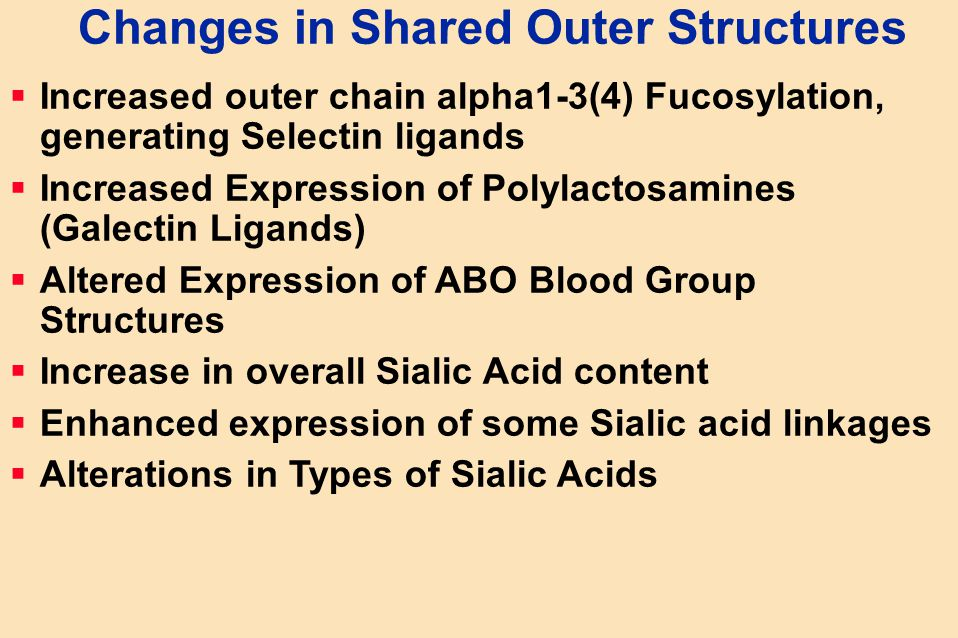 Changes in Shared Outer Structures