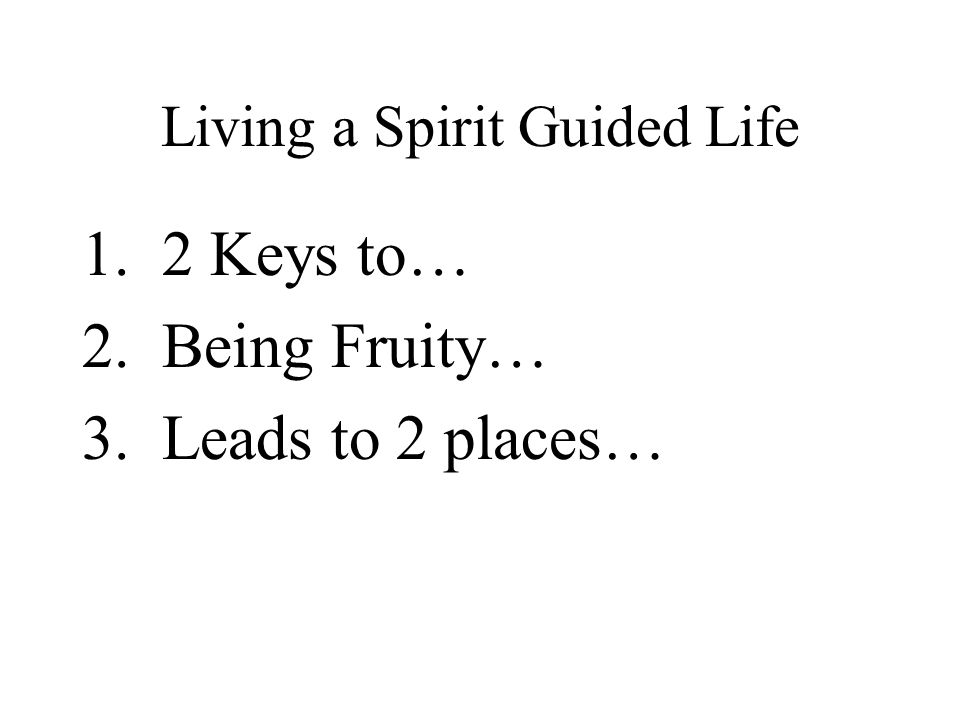 Living a Spirit Guided Life