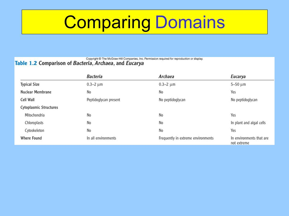Comparing Domains