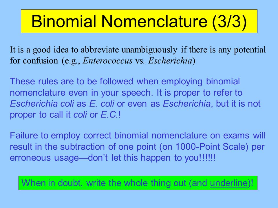how to write binomial nomenclature