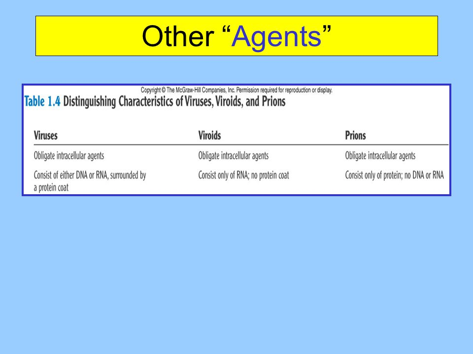 Other Agents