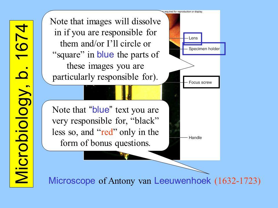 Microscope of Antony van Leeuwenhoek (1632-1723)