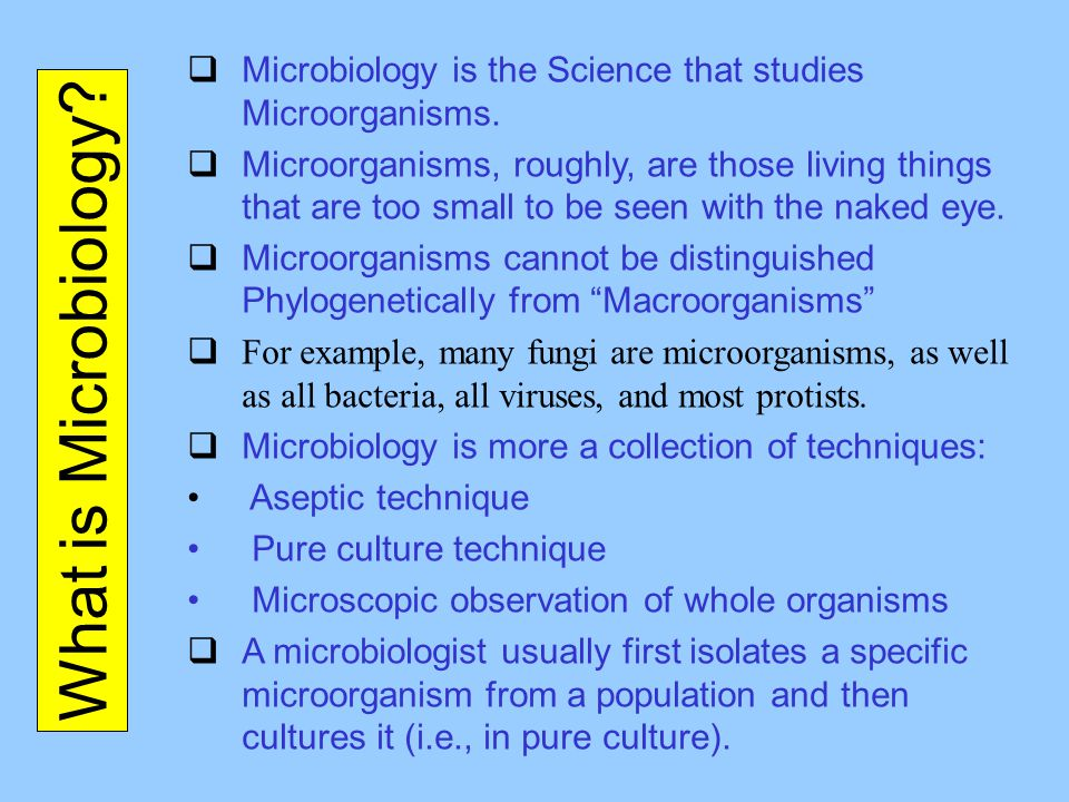 Microbiology is the Science that studies Microorganisms.