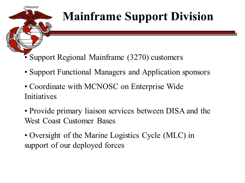 Mainframe Support Division