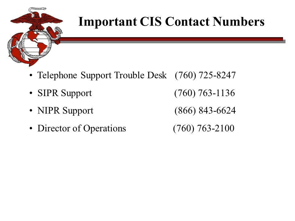 Important CIS Contact Numbers