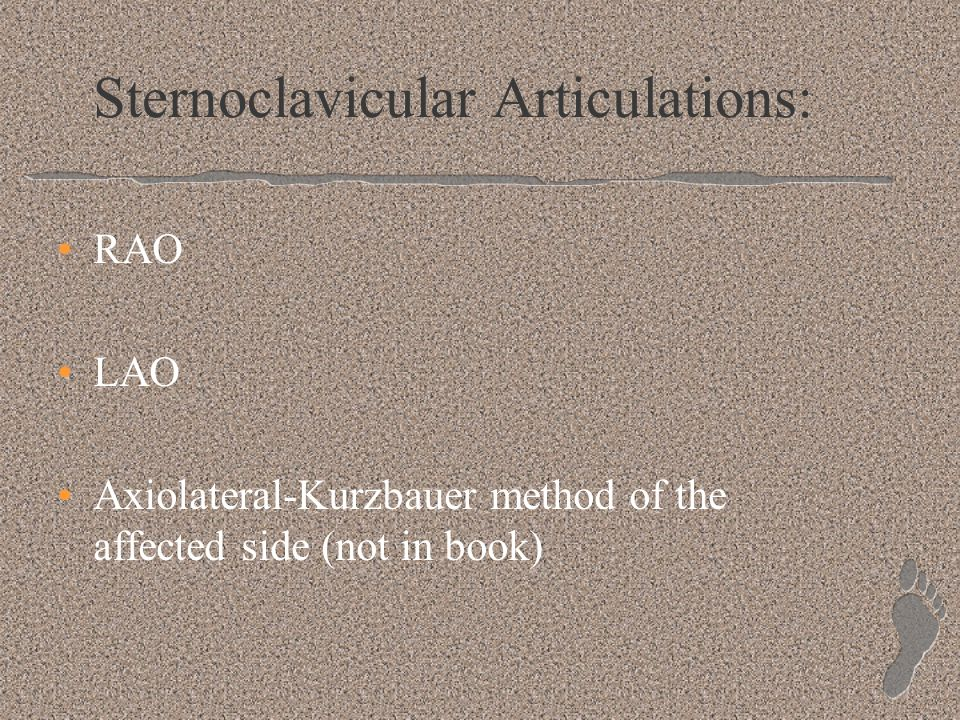 Sternoclavicular Articulations: