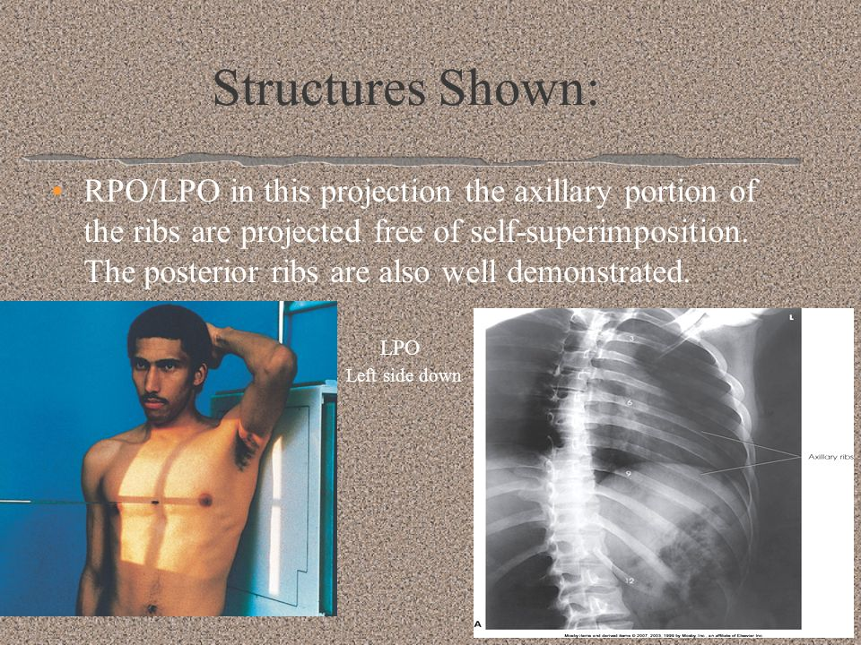 Structures Shown:
