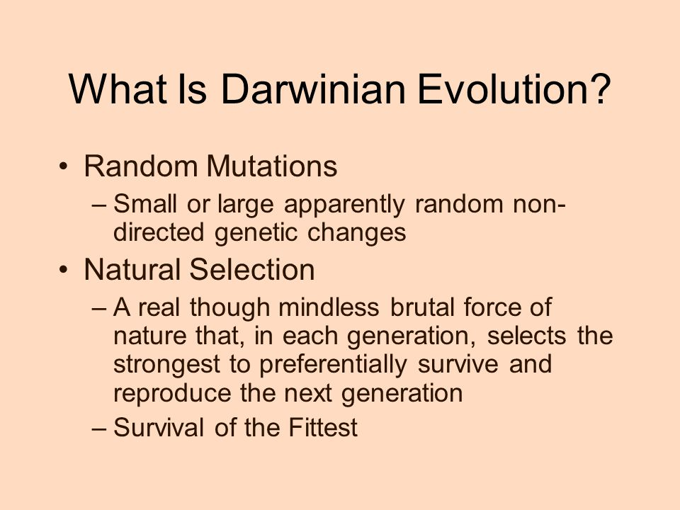 What Is Darwinian Evolution