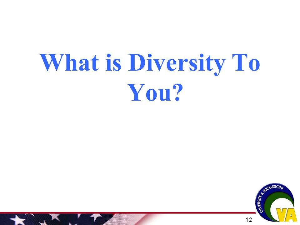 What is Diversity To You