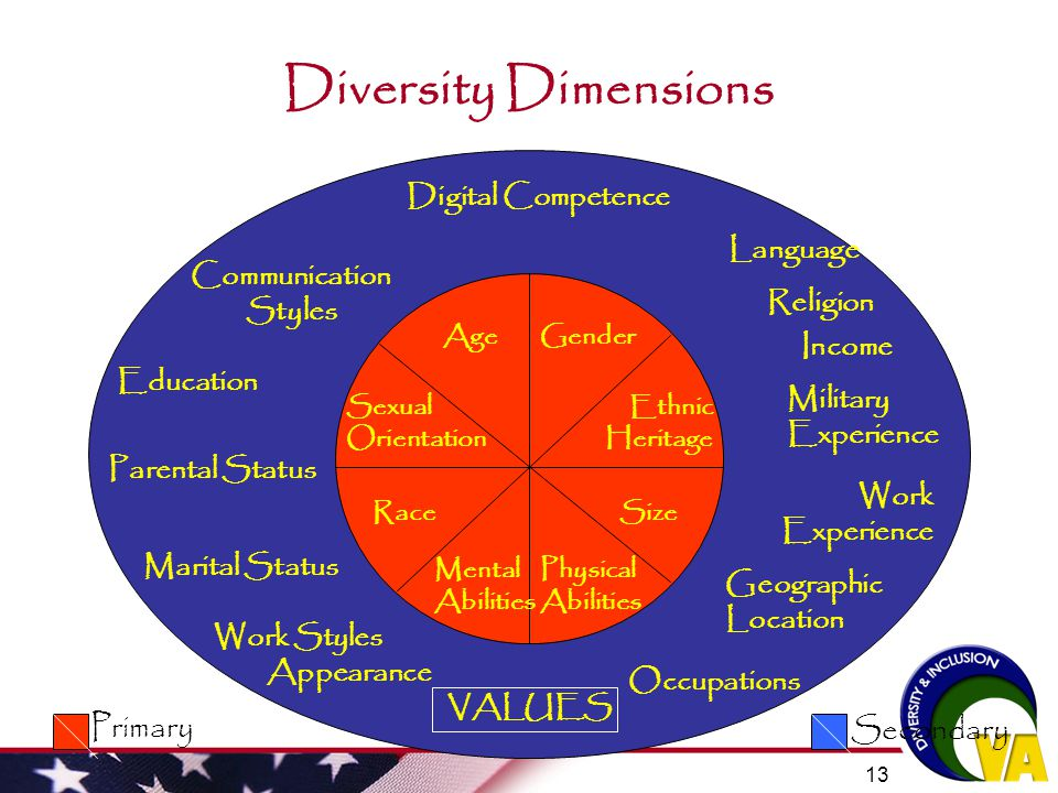 Diversity Dimensions Secondary Primary Digital Competence Language