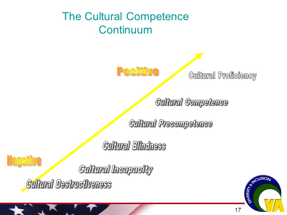 The Cultural Competence Continuum