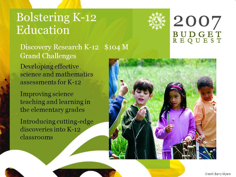 Sunflower blank Bolstering K-12 Education