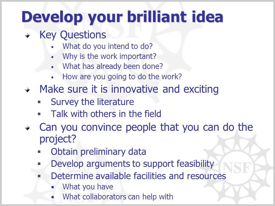 Develop your brilliant idea