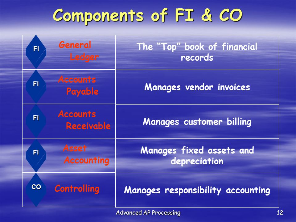 Components of FI & CO The Top book of financial records Ledger
