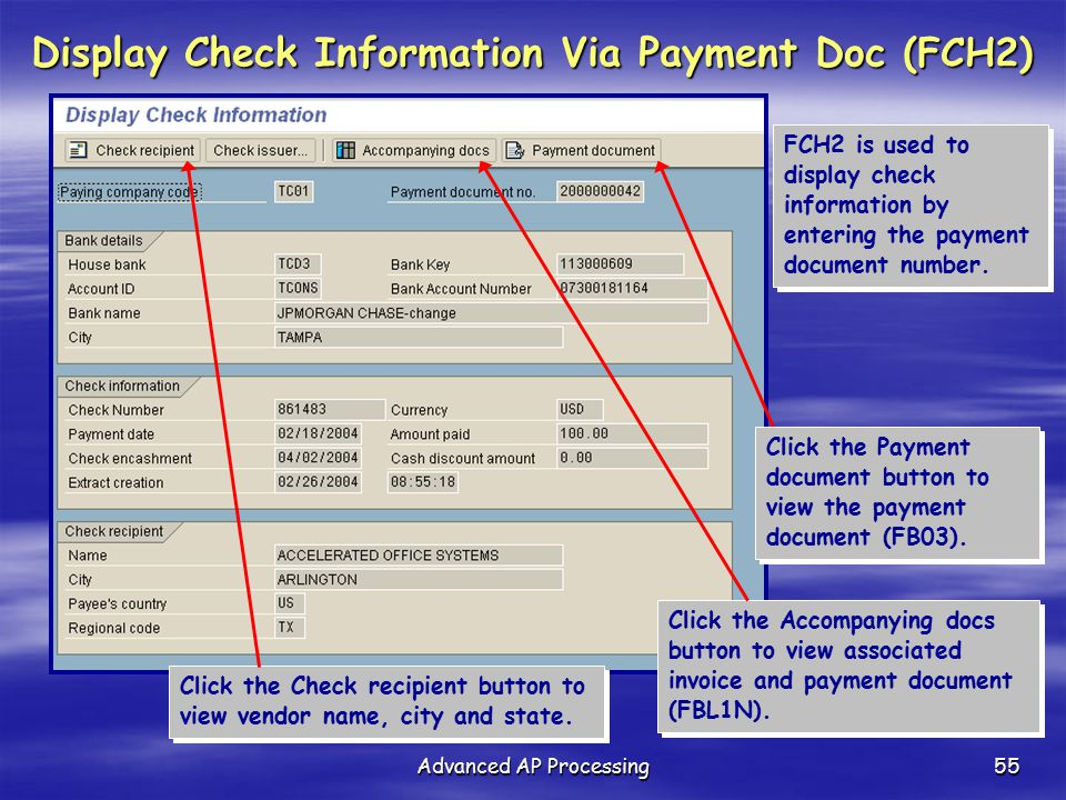 Display Check Information Via Payment Doc (FCH2)