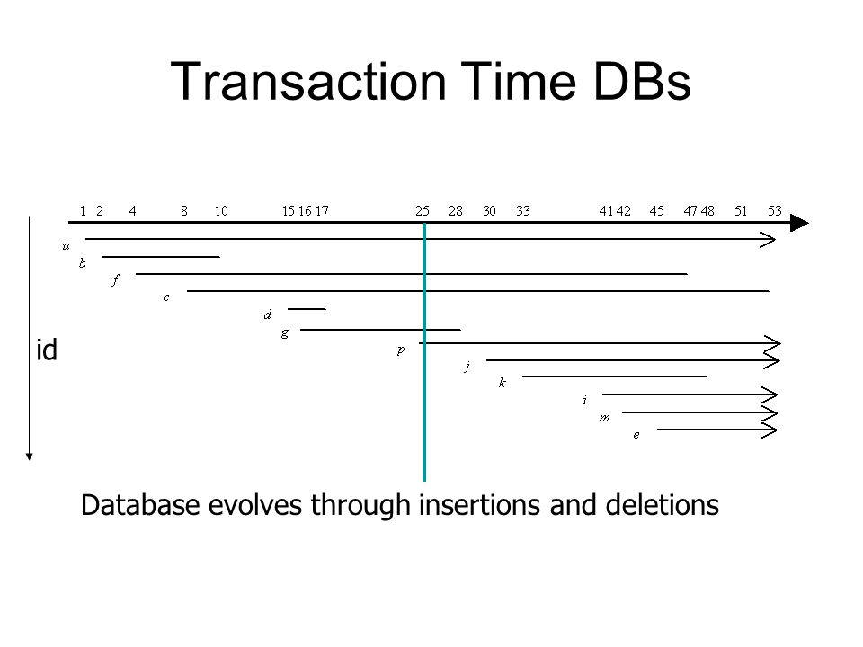 Transaction Time DBs id