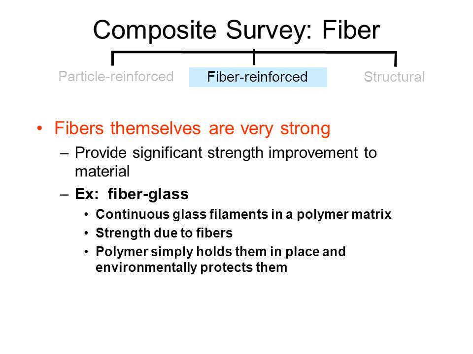 Composite Survey: Fiber
