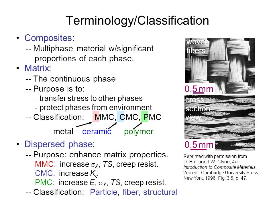Terminology/Classification