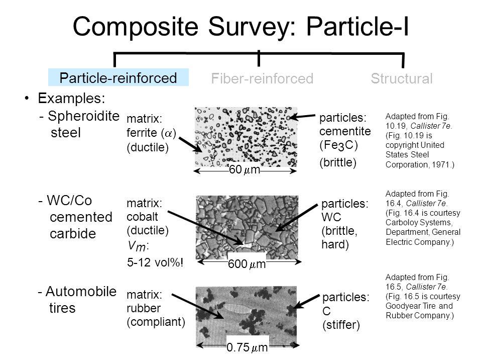 Composite Survey: Particle-I