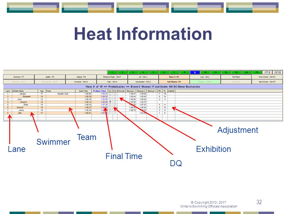 Heat Information Adjustment Team Swimmer Lane Exhibition Final Time DQ