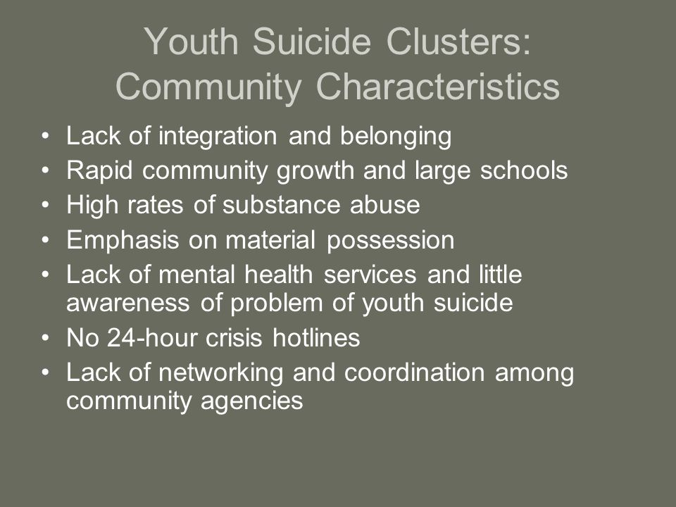 Youth Suicide Clusters: Community Characteristics