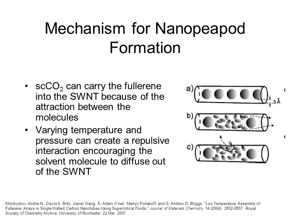 Mechanism for Nanopeapod Formation