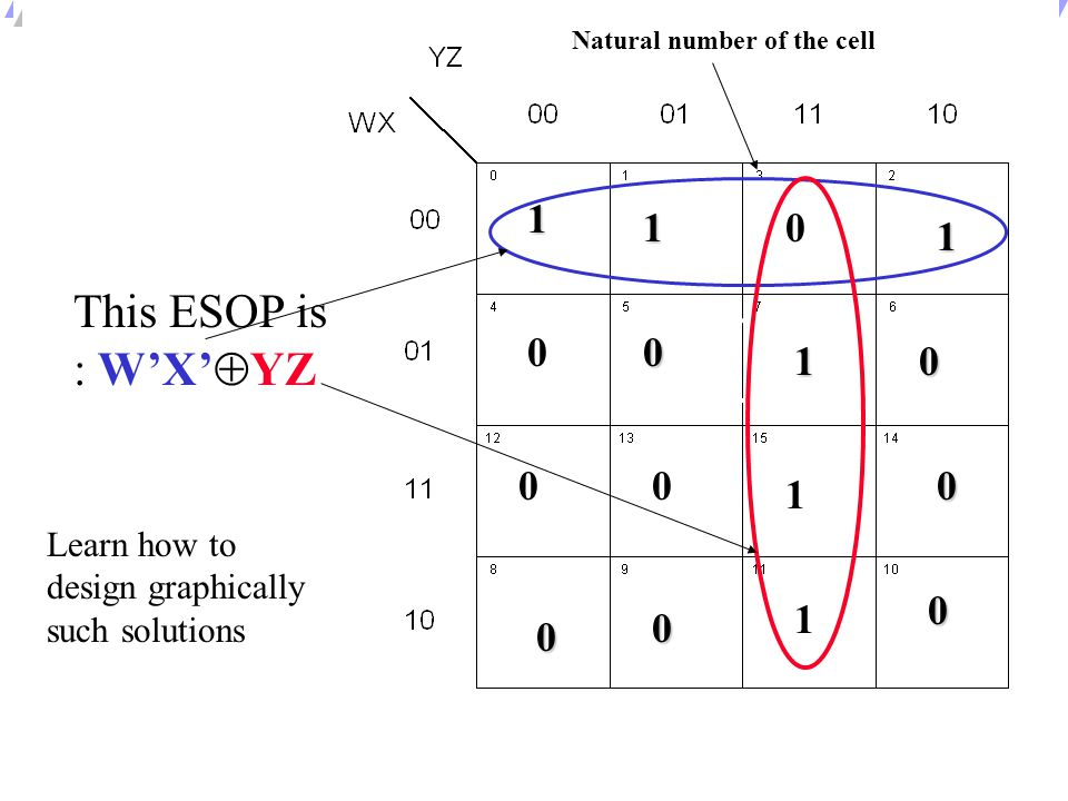 Natural number of the cell