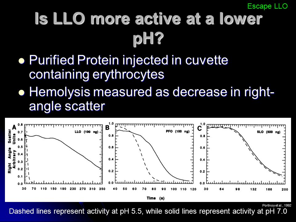 Is LLO more active at a lower pH