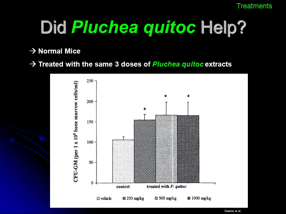 Did Pluchea quitoc Help