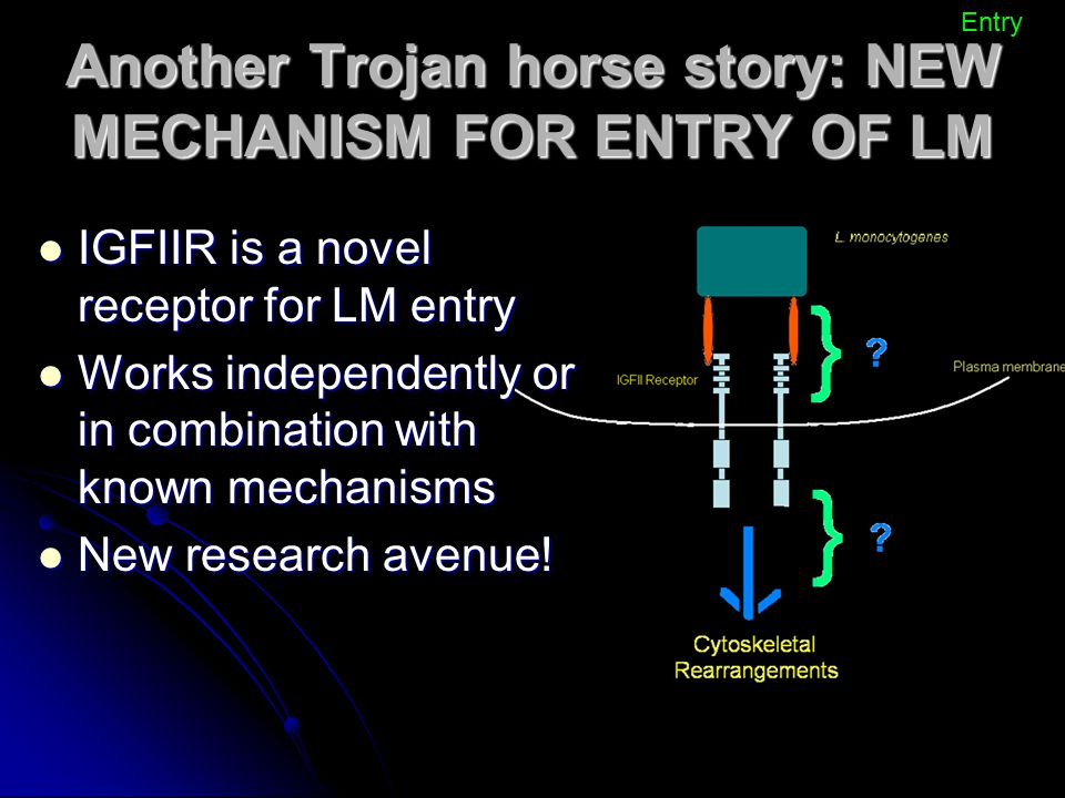 Another Trojan horse story: NEW MECHANISM FOR ENTRY OF LM