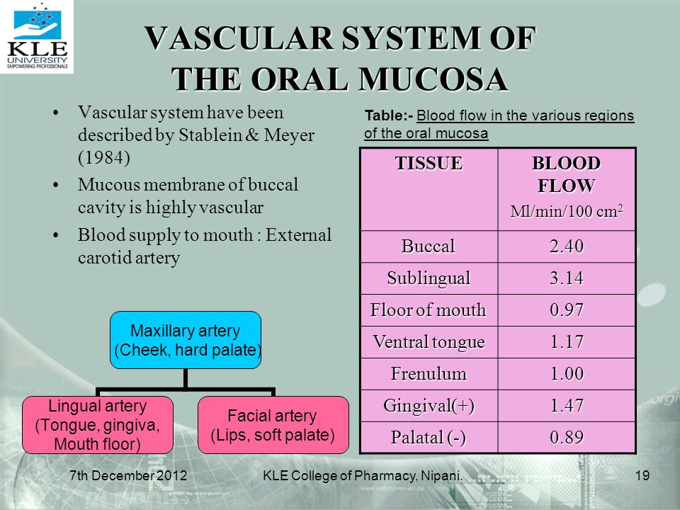 VASCULAR SYSTEM OF THE ORAL MUCOSA