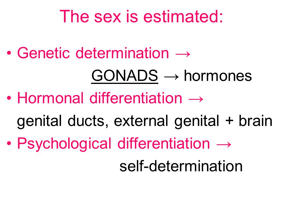 The sex is estimated: Genetic determination → GONADS → hormones
