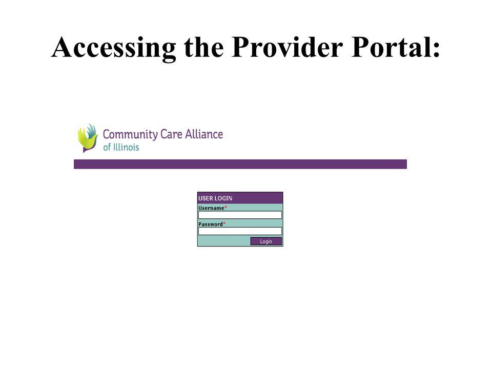 Accessing the Provider Portal: